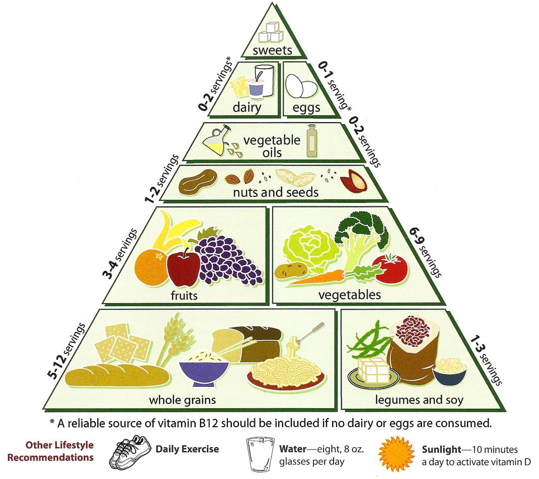 Loma_Linda_University_Vegetarian_Food_Pyramid